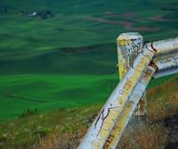 340 PALOUSE 35 STEPTOE BUTTE