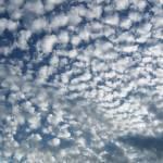 """in awe of beautiful sky"" by SusanEllisonArt"