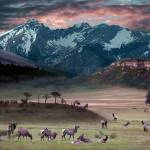 """Wapiti Heaven"" by Bilbow"