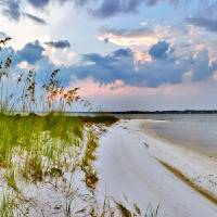 """Panoramic Landscape with Green Grass and Sea Oats"" by eszra"