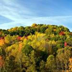 """Hocking Hills Foliage - Panorama"" by mindseyecreative"