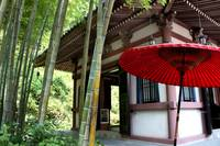 Temple in Bamboo Forest