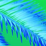 """Frond Blue"" by Debrene"