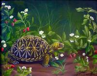 Florida Box Turtle with Strawberries and Flowers