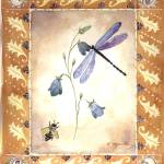 """""""Dragon Fly and Bee with Campanula Flower"""" by kyaudeart"""