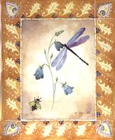 Dragon Fly and Bee with Campanula Flower