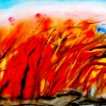 """Autumn Blaze"" by PaulC"