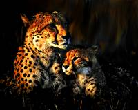 Cheatah and her cub