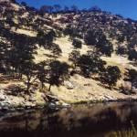 """""""Desert Lake"""" by shepweb"""