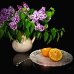 """lilacs-oranges-black"" by sacorivergraphics"