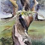 """""""tree trunk"""" by artkat-studios"""