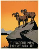 National Parks Preserve Wildlife by J. Hirt (1939)