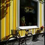 """""""Hljómalind café"""" by PersonalAndSingular"""