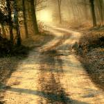 """""""There is Light at they end of the road"""" by JohnEmmaneel"""