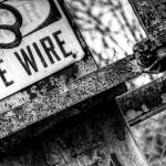 """Live Wire"" by BrianDistad"