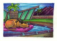 Palm Springs Dog Lounge