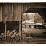 """View from the Barn"" by Tanasi"