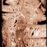 """Mirrored Nude"" by davidsnow"