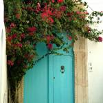"""Lion Knocker Door"" by DonnaCorless"
