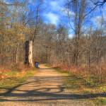 """9-mile Path_HDR_tonemapped"" by SolLeonard"