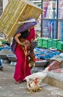 The Chicken Lady - Patan, Nepal