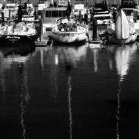 San Francisco, Fishermans Wharf Boats