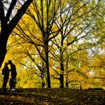 """""""a kiss in the park"""" by etravus"""