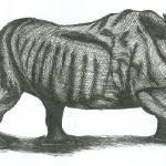 """""""rhino"""" by matob27"""