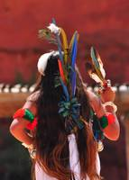 Native Dancer Back