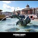 """trafalgar square"" by mikeLphotography"