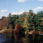 """""""Ames Nowell State Park, MA"""" by Trimere"""
