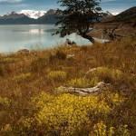 """""""Patagonia010"""" by Irudi"""