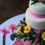 """Cherry Chocolate Cake"" by LiveInTheMoment"