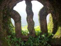 Mossy Ruins