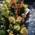 """""""Waterside Flowers"""" by rbagwell"""