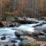 """""""Autumn Mountian creek 1"""" by rbagwell"""