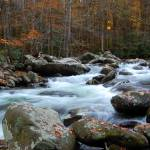 """""""Autumn mountain creek 2"""" by rbagwell"""