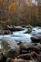Autumn mountain creek 2