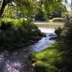 """Garden Stream"" by rbagwell"