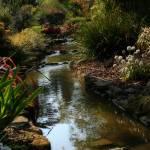 """The Secret Garden"" by misssouthpaw"