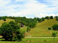 A Hillside in Tennessee
