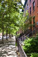 Strolling Through Cobble Hill
