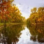 """""""Ukrainian landscape - water & trees"""" by Prokopchenko"""
