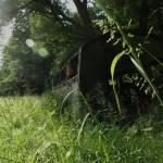 """Abandoned"" by kaminskimichael"