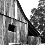 """Barn"" by rbagwell"