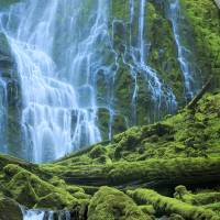 Green Waterfall Art Prints & Posters by Inge Johnsson