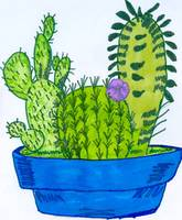 Cactus in Blue Bowl