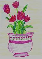 Red Flowers in Pink Planter