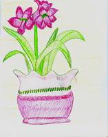 Red Flowers in Pink Planter I