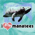 """I Love Manatees"" by maryostudio"